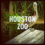 Photo taken at Houston Zoo by Martin L V. on 6/8/2013