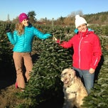 Photo taken at McMurtrey's Red-Wood Christmas Tree Farm by Dan S. on 12/8/2013