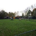 Photo taken at Kinderboerderij Otterspoor by Cyn v. on 11/13/2013