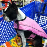Photo taken at PetSmart by Liza on 12/11/2012