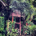 Photo taken at Tree Top Jungle Hut by Alexander B. on 10/7/2012
