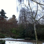 Photo taken at Japanese Garden by Kate W. on 2/9/2012