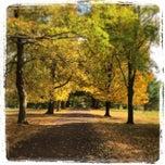 Photo taken at John James Audubon Center at Mill Grove by Carlos M. on 10/18/2014