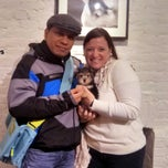 Photo taken at CITIPUPS CHELSEA by CITIPUPS CHELSEA on 1/7/2014