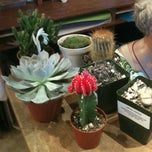Photo taken at Potted by Casey E. on 8/31/2013