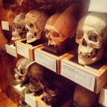 Photo taken at Mütter Museum by Ronnie B. on 3/10/2013