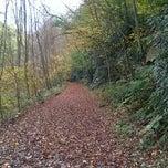 Photo taken at ICV Trail by Dana B. on 10/12/2013