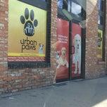 Photo taken at Urban Paws by Emily M. on 7/6/2014