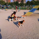 Photo taken at Parque Canino by SoX on 1/13/2013