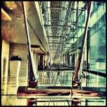 Photo taken at Park Rotana Abu Dhabi by Nicole A. on 2/1/2012