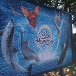 Photo taken at Dolphin Stadium - Blue Horizons by Michael A. on 3/15/2011