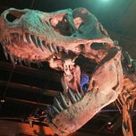 Photo taken at Houston Museum of Natural Science by eRiC r. on 6/23/2012