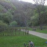 Photo taken at Oko Park Panzio by Adam H. on 4/28/2012