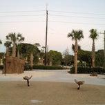 Photo taken at Sunkist Estates Park by Jessica M. on 12/29/2011