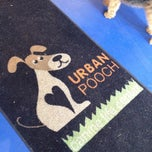 Photo taken at Urban Pooch Canine Life Center by Scott W. on 5/8/2012