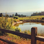 Photo taken at Winter's Hill Estate Vineyard & Winery by Sam L. on 7/9/2012