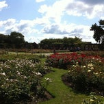 Photo taken at Southsea Rose Garden by Black C. on 7/23/2011