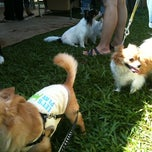 Photo taken at Cutie Pet Fun Fair by didadeé on 10/9/2011