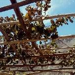Photo taken at Fundo Rodríguez by Francisco V. on 1/4/2012