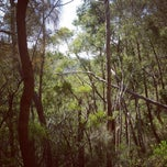 Photo taken at Mt Lofty Summit by Sophia H. on 3/8/2012