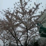 Photo taken at 매봉역 삼거리 by Danielle C. on 4/13/2012