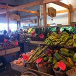 Photo taken at Kingsland Farmers Market by Trond F. on 4/22/2012
