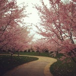Photo taken at Olbrich Botanical Gardens by Nick R. on 3/24/2012