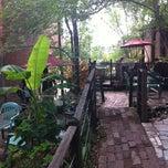 Soulard Coffee Garden Soulard St Louis Mo