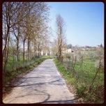 Photo taken at Ferentino by Lorenzo S. on 3/31/2012