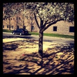 Photo taken at Purchase College Conservatory Of Music by Fernando G. on 3/30/2012