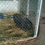 Photo taken at Ely Farm Products by Victoria T. on 4/21/2012