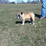 Photo taken at Taylor Farm Dog Park by Rachel M. on 3/10/2012