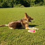 Photo taken at Cherokee Park Frisbee/Rugby Field by Steven G. on 6/3/2012