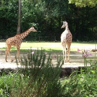 Photo taken at Riverbanks Zoo And Gardens by Anton M. on 5/27/2012