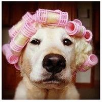 Photo taken at Glamour Hair by Paula C. on 11/30/2012