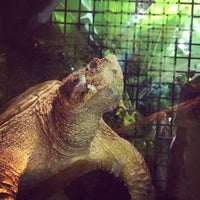 Photo taken at Reptile House by Juan T. on 10/6/2012