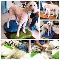 Photo taken at The Animal Medical Center by Animal Medical C. on 7/29/2015