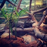 Photo taken at Reptile House by Robert V. on 2/17/2013