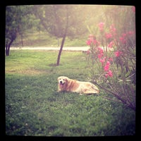 Photo taken at Parque Canino by Rodrigo B. on 11/28/2012