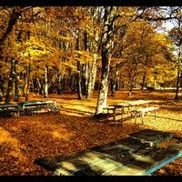 Photo taken at Vlasti by Giorgos K. on 11/18/2012