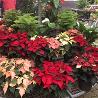 Photo taken at Richmond Nursery by Rob D. on 11/30/2013