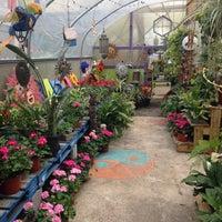 Photo taken at Pablos Garden Center by Moriah P. on 5/17/2015