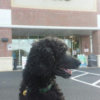 Photo taken at Pet Supplies Plus by Kim M. on 10/14/2014