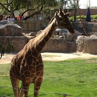 Photo taken at Reid Park Zoo by Talia L. on 3/29/2013