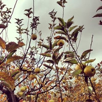 Photo taken at Apple Junction by Kevin N. on 10/20/2012
