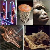 Photo taken at Houston Museum of Natural Science by Amy on 8/16/2013