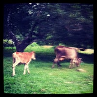 Photo taken at Jln. Mount Erskine by Liz W. on 9/30/2012
