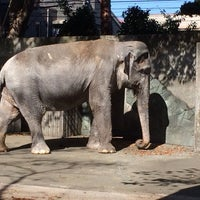Photo taken at Inokashira Park Zoo by NORI on 10/27/2013