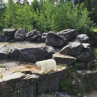 Photo taken at Zoo sauvage de Saint-Félicien by Yan P. on 8/10/2016