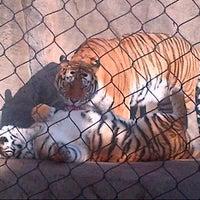 Photo taken at Toledo Zoo by Nancy G. on 11/6/2012